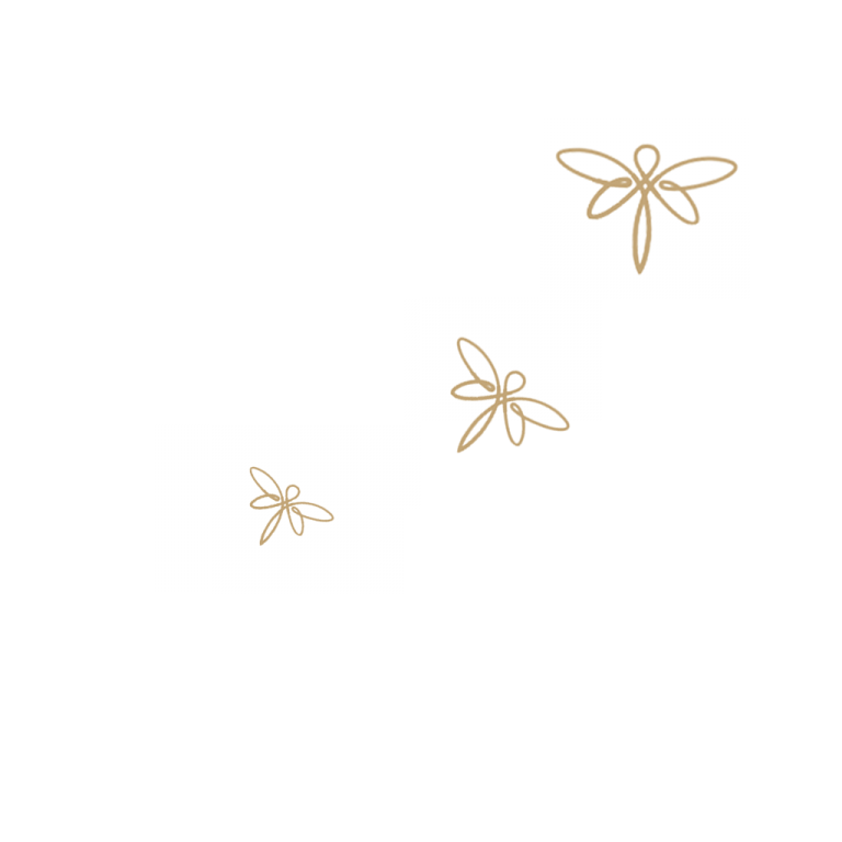 Envol de libellules